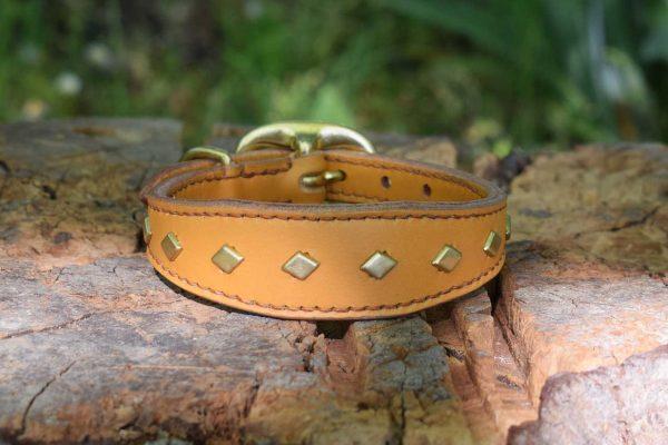 Collare sagomato con borchie a rombo taglia S con fibbia ovale adatto per cani di piccola taglia.