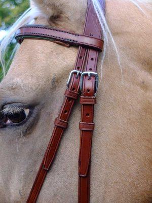 Dettaglio di testiera bitless per cavallo con frontalino e capezzino con imbottitura e bordature colorate.